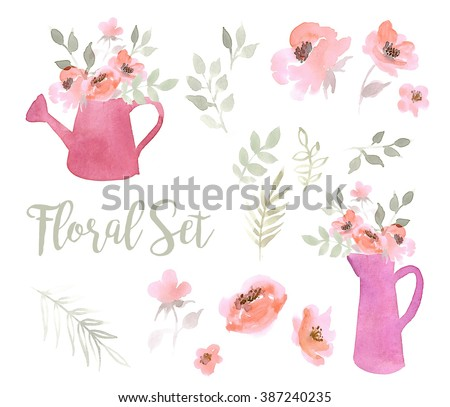 Floral set of pink flowers,watering cans and pitchers  on a white background. Watercolor illustration - stock photo