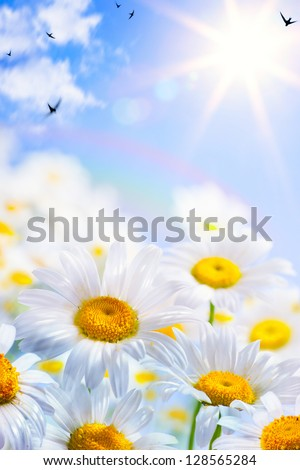 floral spring and summer background