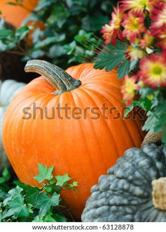 Floral Thanksgiving harvest display with pumpkins and squash and wheat