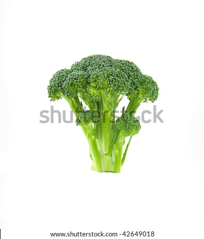 floret of brocolli