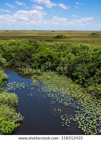 Florida Everglades View at Shark Valley showing Wetlands and Sawgrass Prairie - stock photo