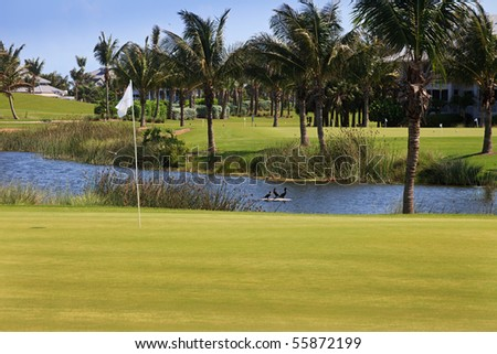 Florida Golf Course with Palm Trees - stock photo