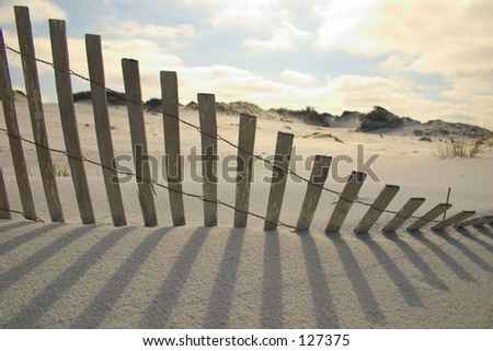 Florida Paradise - shadow art (exclusive at shutterstock) - stock photo