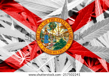 Florida State Flag on cannabis background. Drug policy. Legalization of marijuana - stock photo