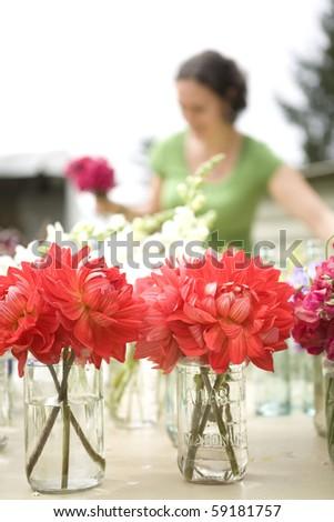 florist prepares jars of flowers - focus on flowers - stock photo