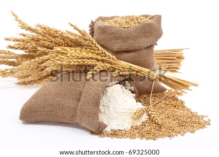 Flour and wheat grain - stock photo