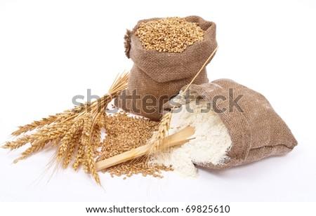 Flour and wheat grain - stock photo
