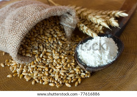 Flour and wheat grain on wooden background - stock photo