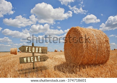 Flour or Wheat wooden direction sign in agricultural field. - stock photo