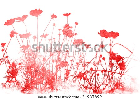 flower abstract textures and backgrounds
