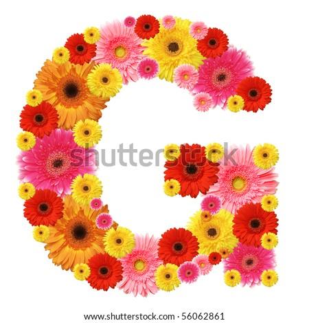 flower alphabet - stock photo