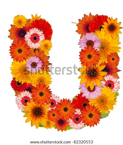 Flower alphabet isolated on white. Letter U