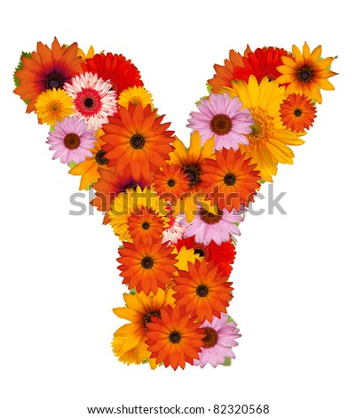 Flower alphabet isolated on white. Letter Y
