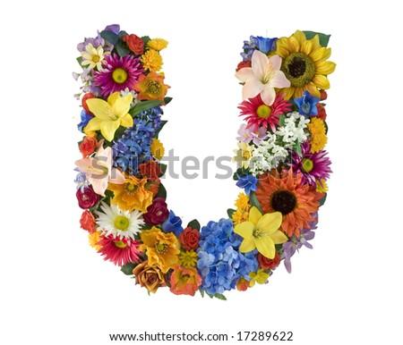 Flower Alphabet - U - stock photo