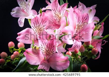 Flower, alstroemeria, hypericum, close-up, macro. - stock photo