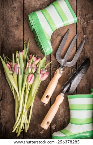 Flower and Garden tools - stock photo