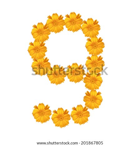 flower and numbers - stock photo