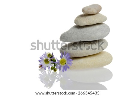 Flower and stones stacked isolated with reflection - stock photo