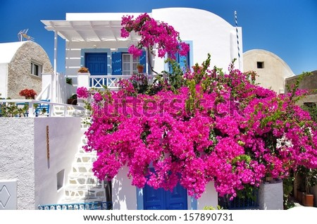 Flower and White House - stock photo