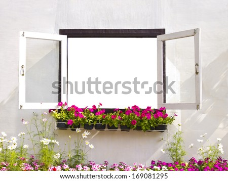 flower and window with empty space  - stock photo