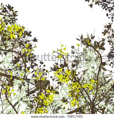 Flower Art Digital Painting Background on white - stock photo