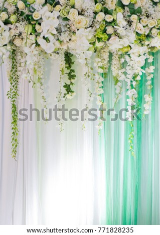 Wedding backdrop flower decoration stock photo 361318943 flower background backdrop wedding decoration rose pattern wall flower rose background texture junglespirit Image collections