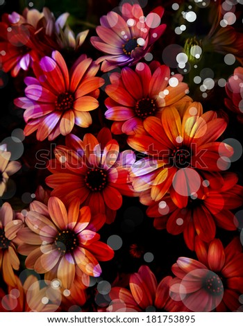 Flower background, Beautiful red flowers made with color filters, spring bloom - stock photo