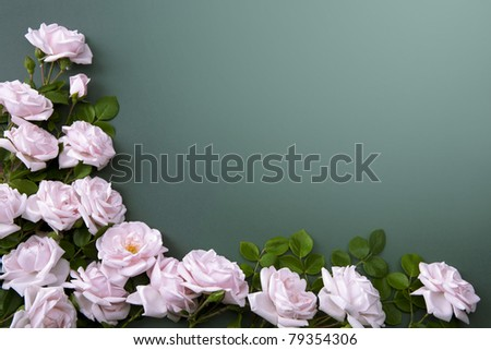 flower Background for greeting card - stock photo