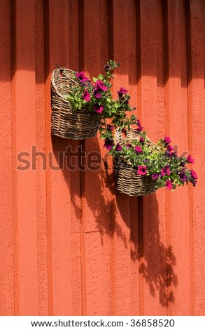 flower baskets with petunias on a wooden wall - stock photo