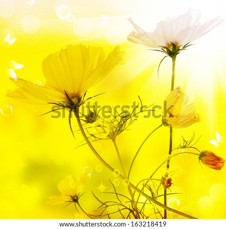 Flower beautiful card - stock photo