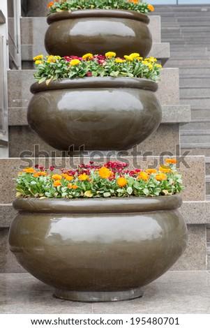 flower bed in the garden - stock photo