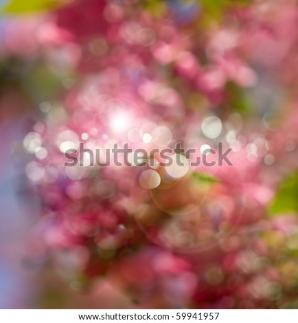 Flower bokeh abstract light background - stock photo
