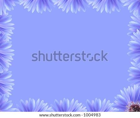 Flower border - stock photo