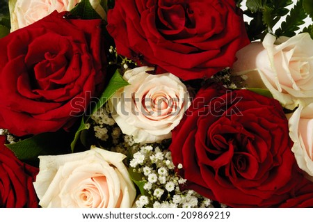 Flower bouquet of red and pink roses.  - stock photo