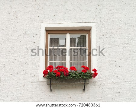 Flower box full of geraniums is decorating a window in front of a house in Durnstein, Germany