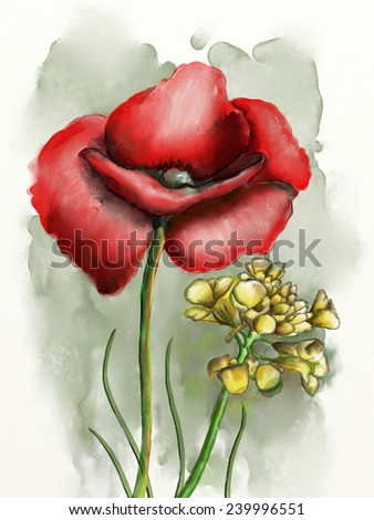 Flower composition with a red poppy. Original watercolor. - stock photo