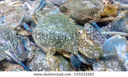 Flower crab blue, pile up in supermarket close up - stock photo