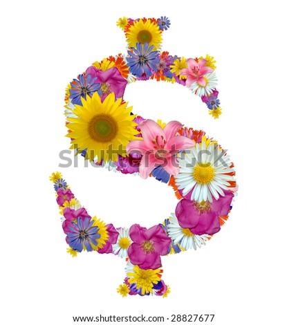 flower dollar sign - stock photo