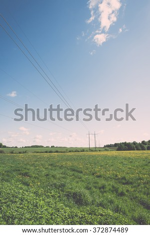 Flower field and blue sky with sun in summer - vintage effect