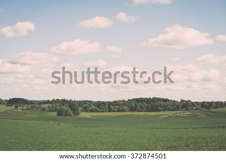 Flower field and blue sky with sun in summer - vintage effect - stock photo