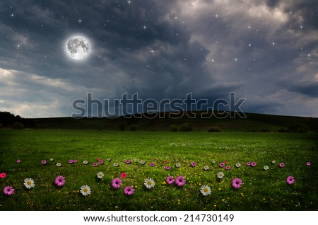 Flower field in the night. Elements of this image furnished by NASA.