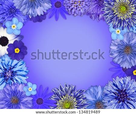Flower Frame with Blue, Purple Flowers Isolated on Blue Background. Daisy, Chrysanthemum, Cornflower, Dahlia, Iberis, Primrose - stock photo