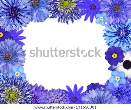 Flower Frame with Blue, Purple Flowers Isolated on White Background. Daisy, Chrysanthemum, Cornflower, Dahlia, Iberis, Primrose - stock photo