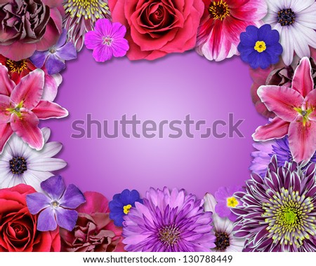 Flower Frame with Pink, Purple, Red Flowers Isolated on Pink Gradient Background. Selection of Nine Periwinkle, Rose, CornFlower, Lily, Daisy, Chrysanthemum, Dahlia, Carnation, Primrose Flowers - stock photo