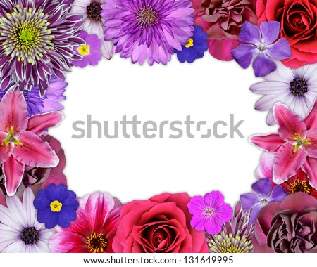 Flower Frame with Pink, Purple, Red Flowers Isolated on White Background. Selection of Nine Periwinkle, Rose, CornFlower, Lily, Daisy, Chrysanthemum, Dahlia, Carnation, Primrose Flowers - stock photo