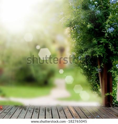 flower garden background - stock photo