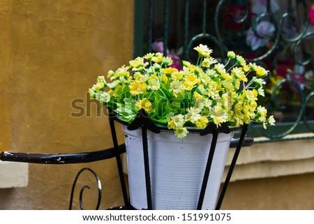 flower garden in flowerpot - stock photo