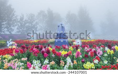 flower garden in foggy scene - stock photo