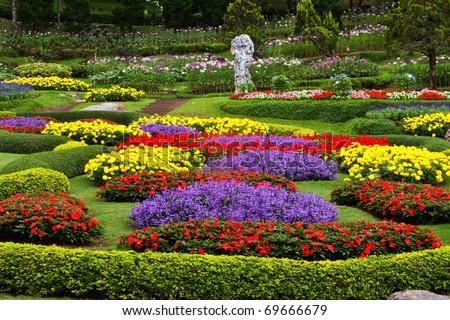 Flower garden in north of Thailand - stock photo