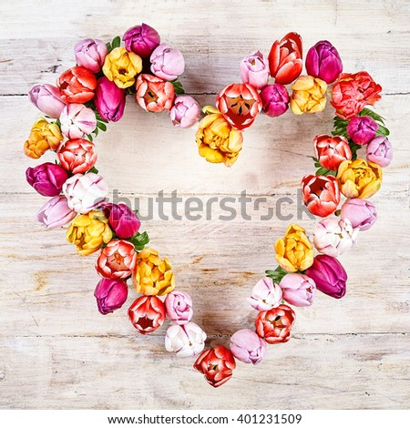 Flower heart on wood white background. Tulips in a row heart shaped for springtime concepts - stock photo